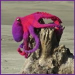 Omniscient Octopus by JoansGarden for Knitted creatures