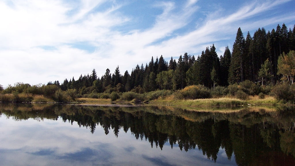Canoe trail on Crystal Creek, near Malone Springs in the Upper Klamath Wildlife Refuge, Oregon