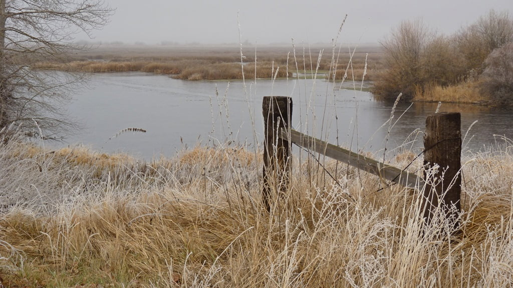 A foggy autumn day at the entrance to the Wood River Wetlands parking area.