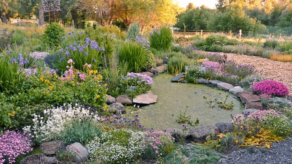 The colors of spring are unmistakable in this garden.