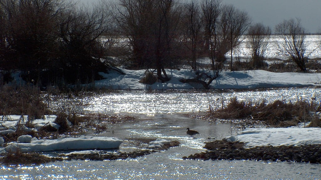 Late afternoon sun glinting on the Wood River and Agency Lake on a cold, wintry, spring day.
