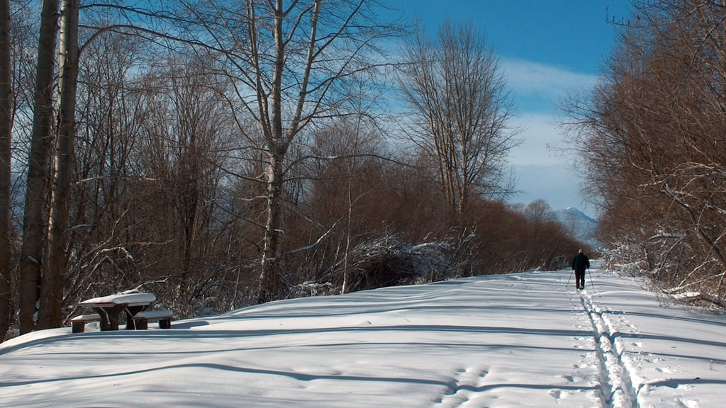 Cross country skiing on the road into the Wood River Wetlands - an 11 mile trip with enough snow - doesn't happen a lot..